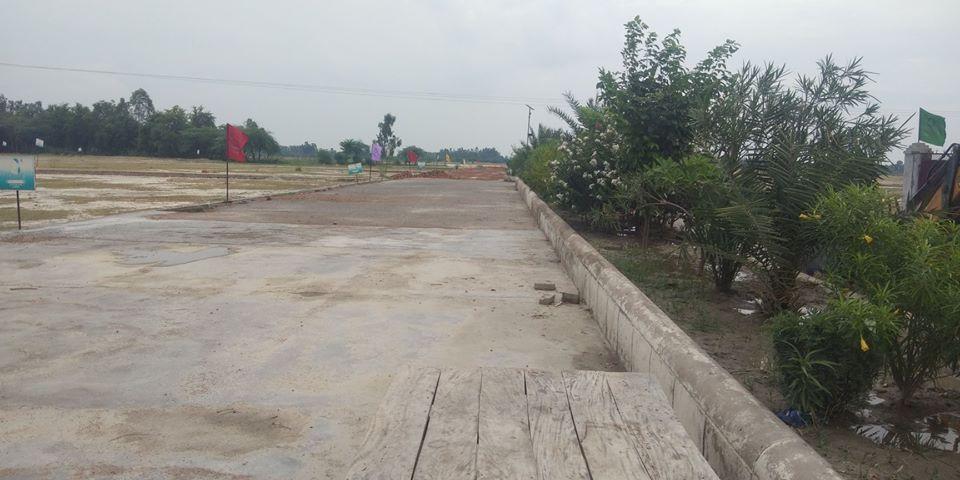 Hitech Farms